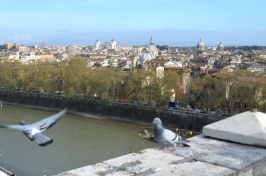 Rome_797