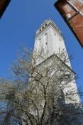 San Pietro_1115