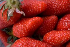 premières fraises_1402
