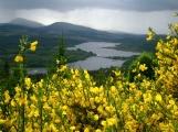 loch Lochy_1592