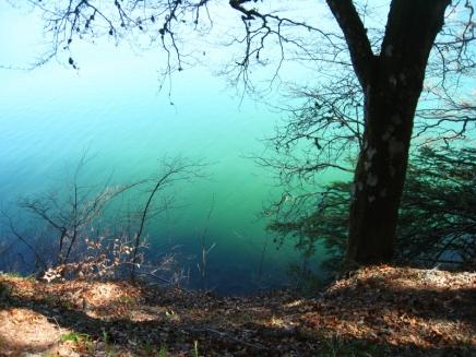 lac Pavin_1743
