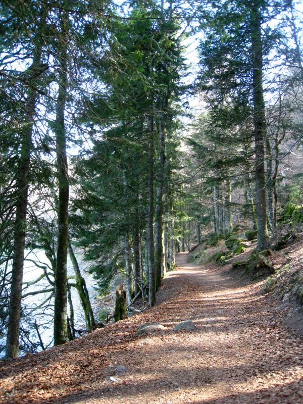 lac Pavin_1745