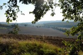 vallée et coteaux sept14_3859