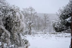 3février15_4984