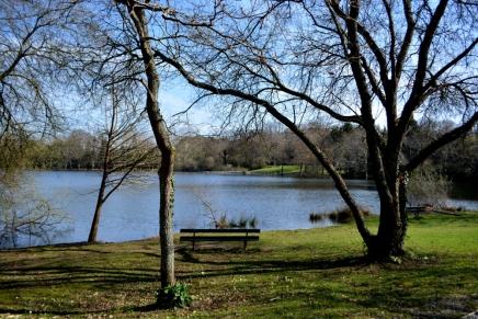 lac Marion-17mar15_5369