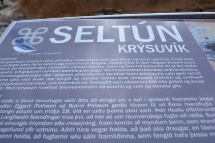 11juin_péninsule Reykjanes_7339