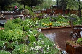 16juin15_jardin de Petra_7452