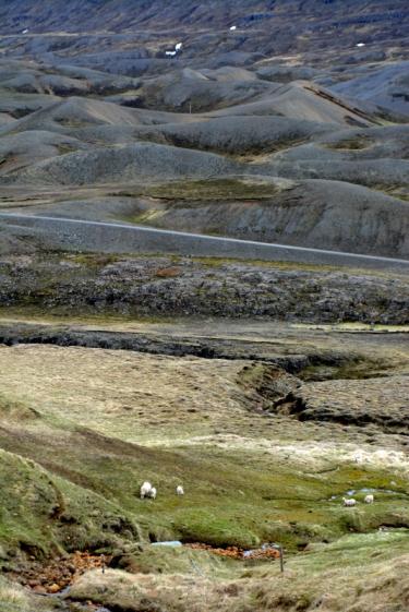 17juin15_route 1 vers Husavìk_7477