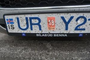 18juin15_rikmy et bitmy de Myvatn_7560