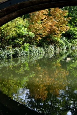 01sept- Regent's Canal_8559