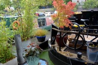 01sept- Regent's Canal_8563