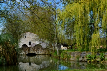 Moulin de Bassilour-Bidart_7avril2016_1