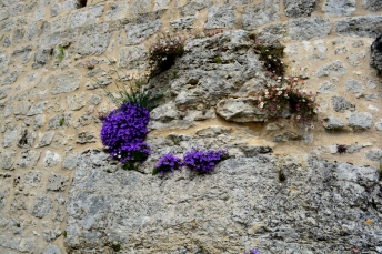 18mai2016_18_château Gramont