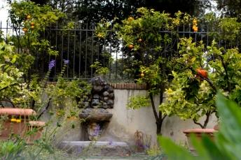 28avril_Borghese jardin