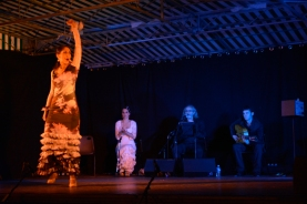 15juillet-Cuadro Flamenco 5