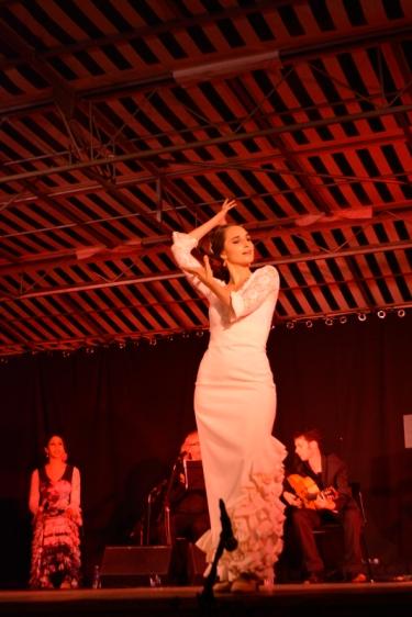15juillet-Cuadro Flamenco 7