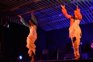 15juillet-Cuadro Flamenco 9