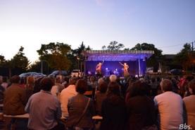 15juillet2016_flamenco