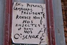 24août_Toulouse rue des Paradoux-3