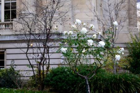032_11dec16_grand-palais
