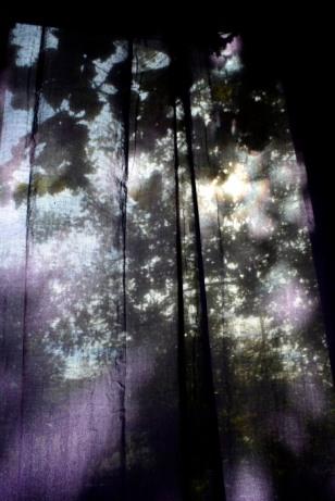 24octobre17_à travers les rideaux