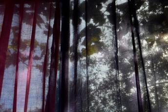 24octobre17_derrière les rideaux