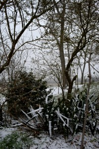 28février2018_4_neige