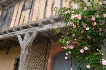03juin18_RdV jardins Drudas_Chartreuse_29