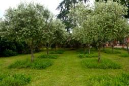 03juin18_RdV jardins Drudas_Chartreuse_36