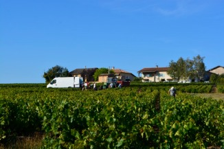 101_10sept18_vendanges