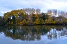 29_10nov18_la Seine à La Roche Guyon